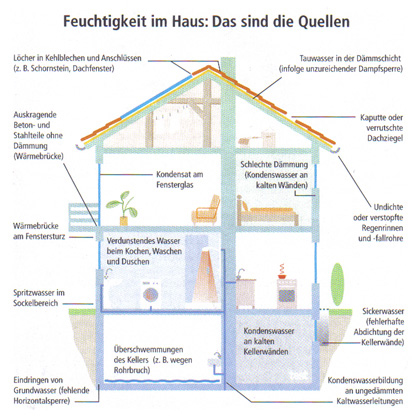 schimmelpilzanalyse egbb energetische geb udebewertung. Black Bedroom Furniture Sets. Home Design Ideas